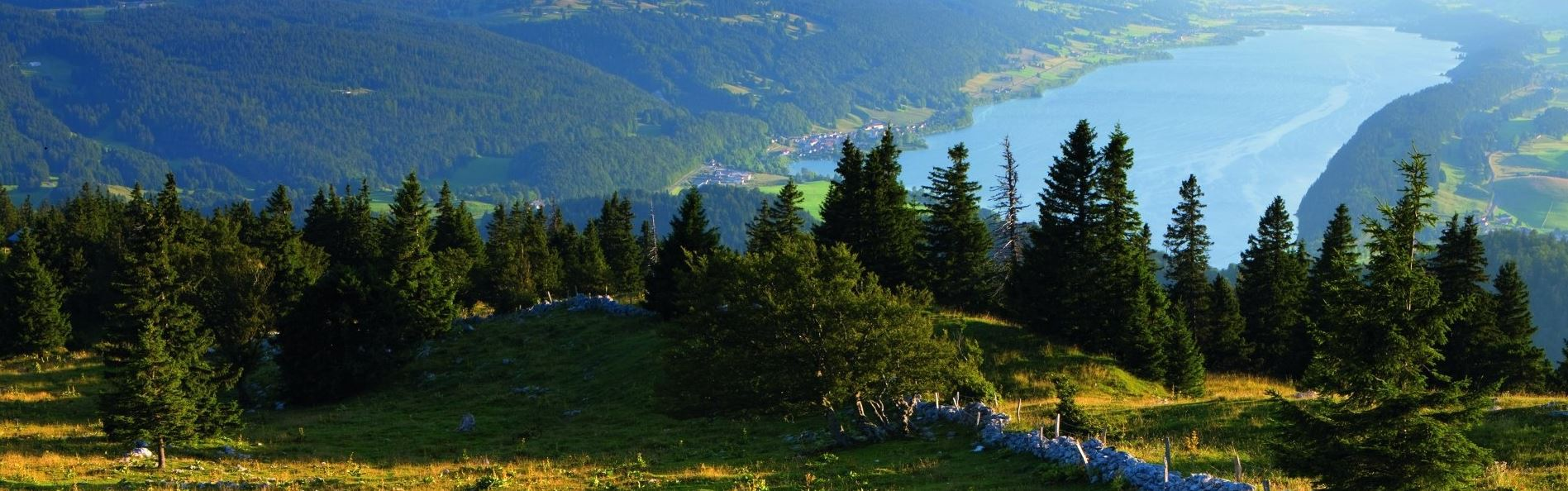 Parc Jura vaudois(c)Schweiz Tourismus (3)